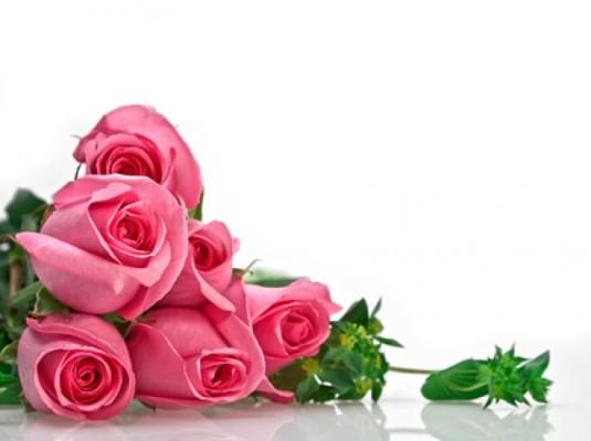 un-bouquet-di-rose-rosa-composizione-dell&-39;immagine_38-4195